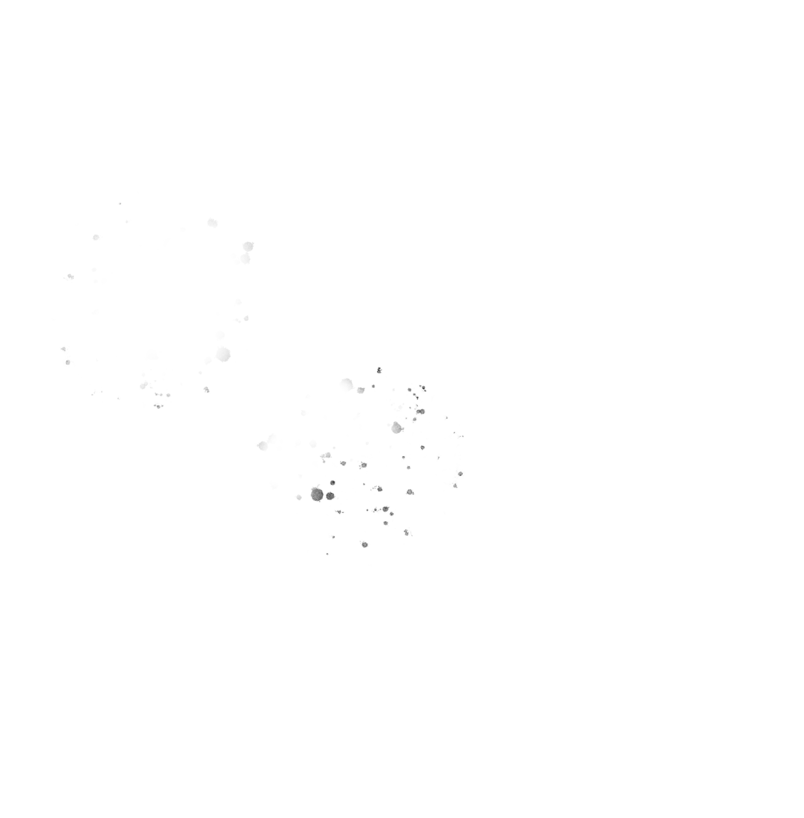 Le CaMo Photography