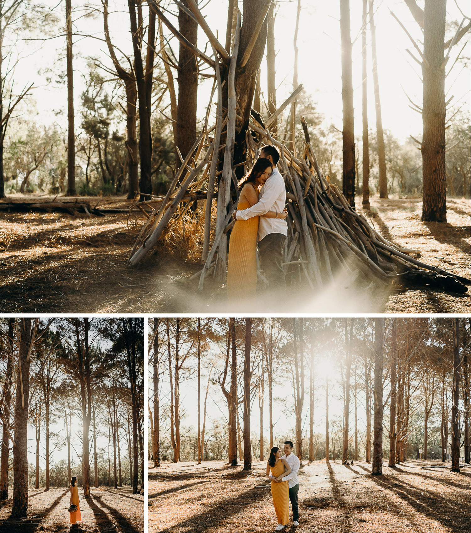 Couple photoshoot in pine forest, casual prewed and engagement photoshoot in pine forest, sunset in pine forest, casual photoshoot during sunset in pine forest, couple hugging in pine forest